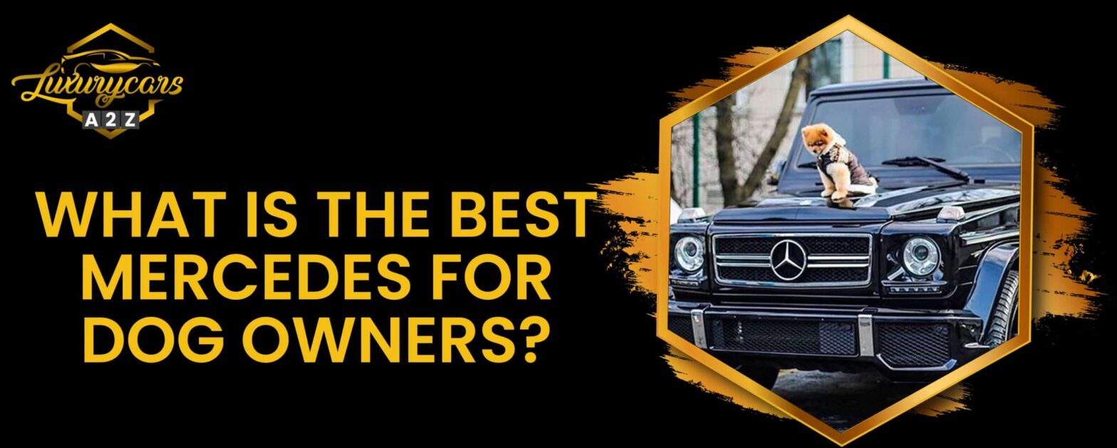 what is the best mercedes for dog owners